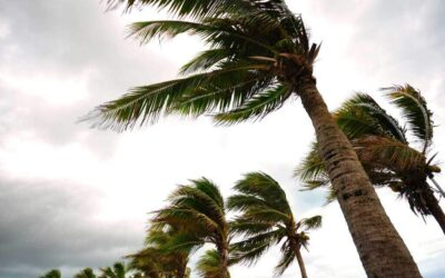 The Complete Florida Resident's Guide To Hurricane Insurance